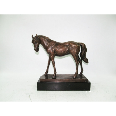 Лошадь на камне