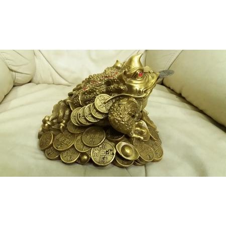 Жаба на деньгах ( с рогом)