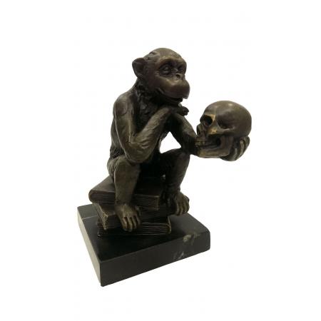 обезьяна Дарвина